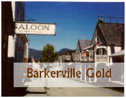 the town of barkerville bc