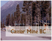 the town and mine of cassiar bc